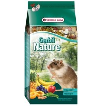 gerbil-nature
